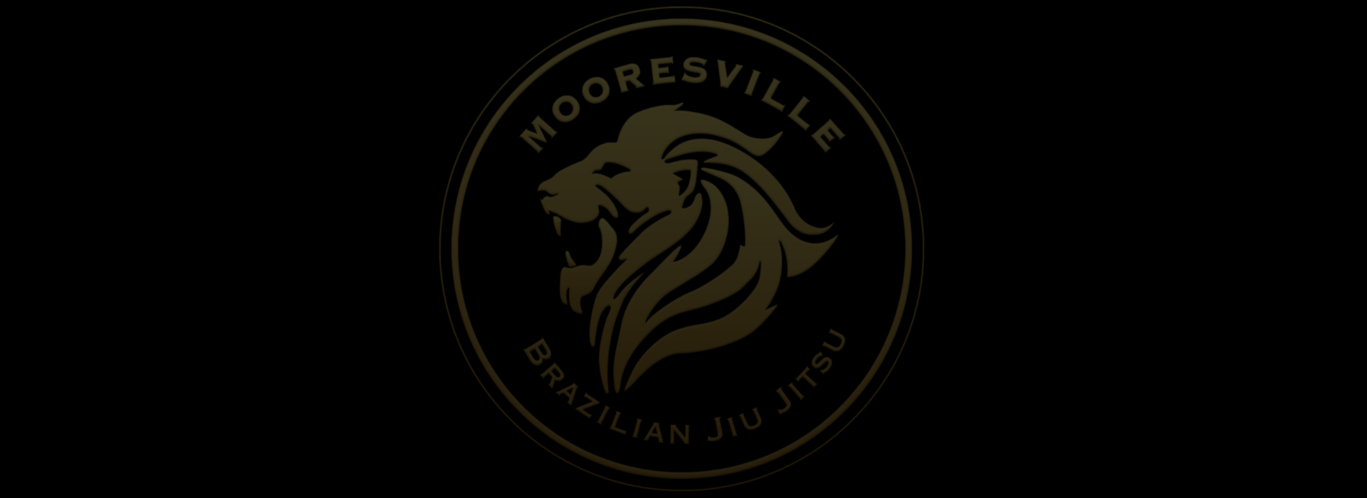 Mooresville Brazilian Jiu Jitsu photo